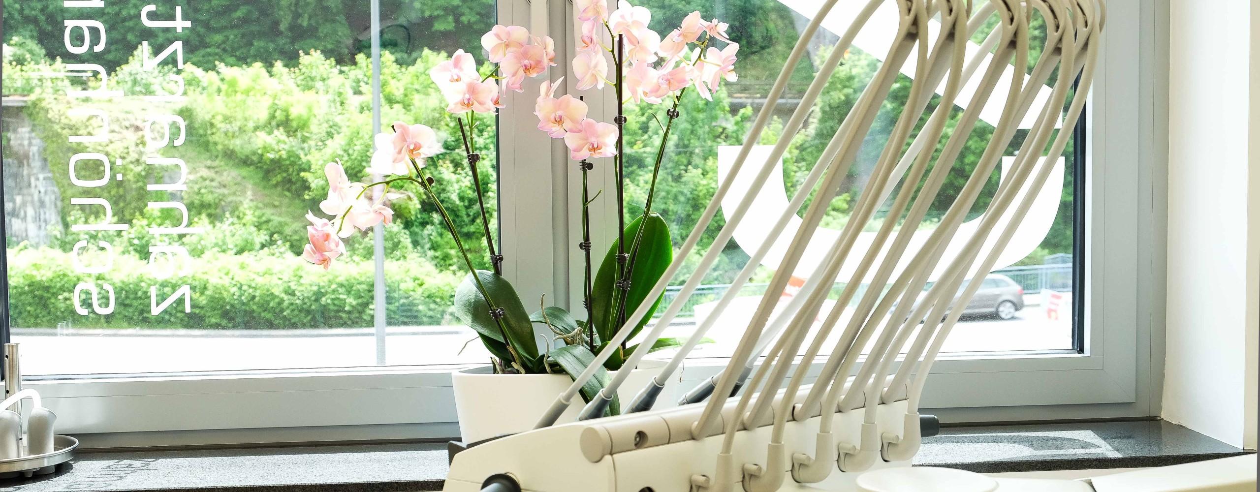 zahnarzt praxis sch nhardt in diez bei limburg an der lahn. Black Bedroom Furniture Sets. Home Design Ideas